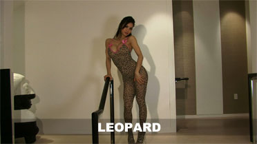 Francine Dee Leopard Video